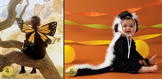 butterflyskunk1